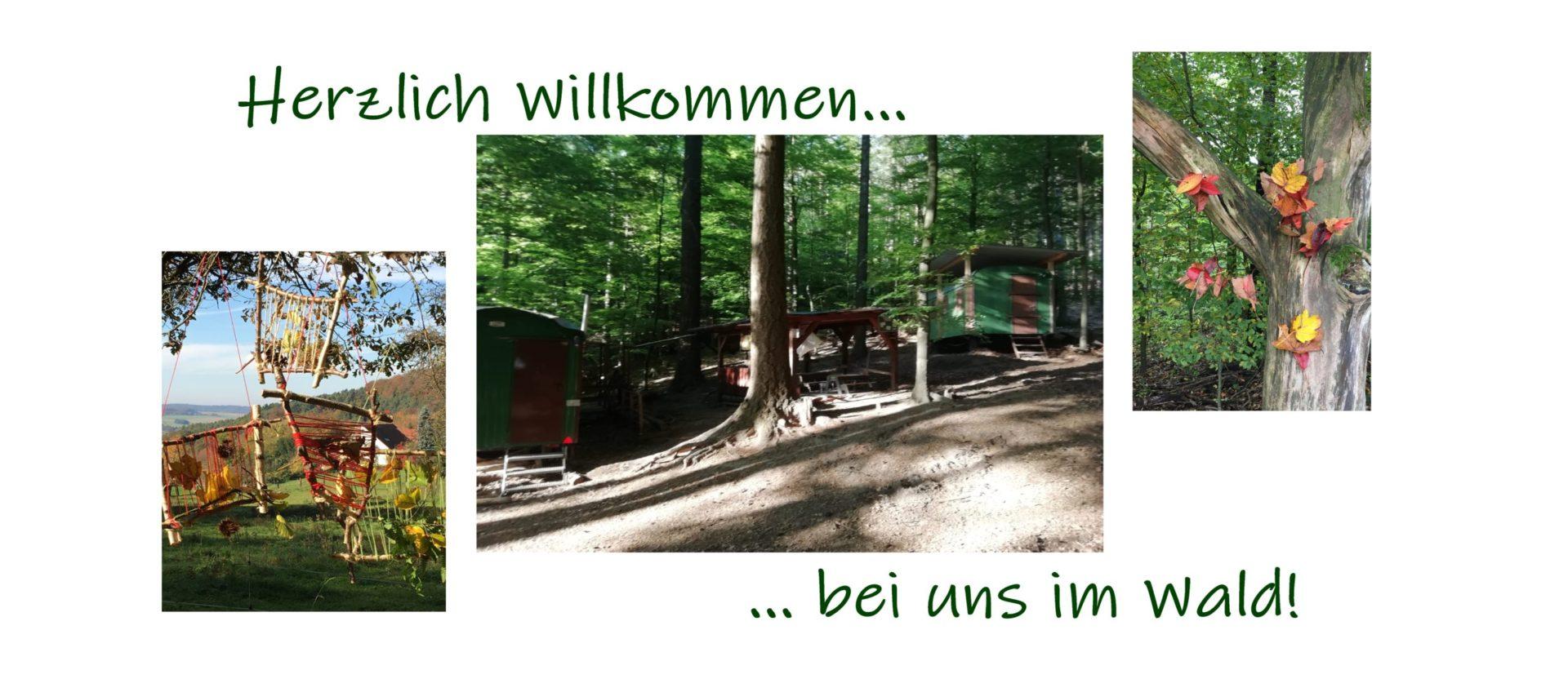 Waldgruppe Kahlgrundhuzzel